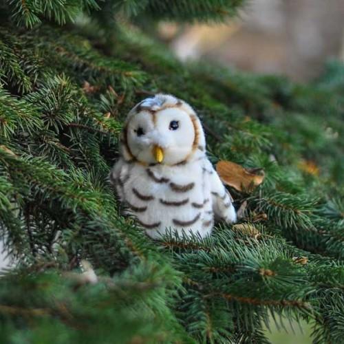 Плюшена играчка Сова - стани дарител на WWF България