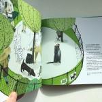 Куче на име Коте - история за приятелството отвъд различията, Томи Контио / издателство 'Ракета'