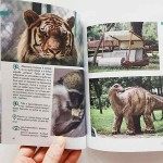 101 отбивки с деца - идеи за семейни пътешествия в България, Иван Михалев и Елина Цанкова