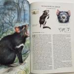 Атлас на застрашените видове - 41 изчезващи животински екземпляра, Радек Мали / Павел и Павла Дворски