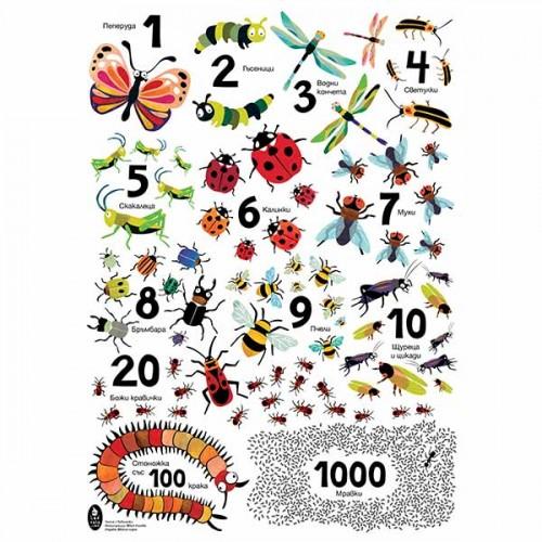 Цветен плакат 'Числа с буболечки', 50х70 в ТУБУС, Ася Колева