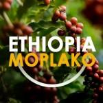 Етиопия Моплако от DABOV Specialty Coffee - прясно изпечена арабика сорт Типика с аромат на добре узрели червени плодове, 200g