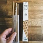 Бамбукови сламки за пиене /4 броя, био-разградими/ + четка от неръждаема стомана 'Nordics'