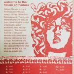THE HOUSE OF MEDUSA - SOUNDS FOR WRITTING, втори ембиънт проект на Виргиния Захариева